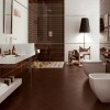 Nice Brown Bathroom Ceramice Color