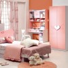 Nice Color Idea For Girl Bedroom Interior