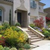 Plants Tips To Decor Front Home Garden
