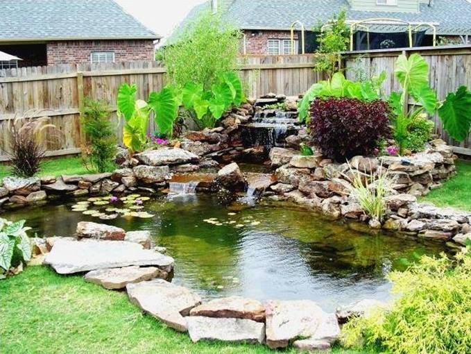 Small Pond Design For Backyard Garden