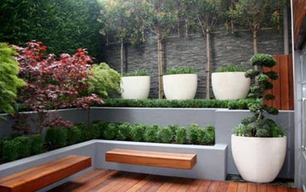 Urban Home Garden With Minimalist Design