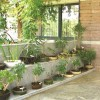 Urban Garden Design With Small Cost