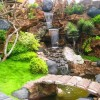 Best Home Backyard Garden Lanscaping Idea
