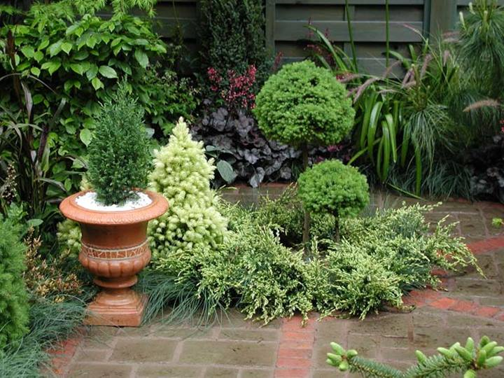 Best Small Home Garden Arrangement
