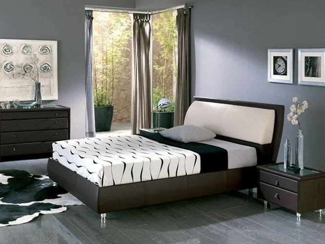 Elegant Gray Main Bedroom Color Selection