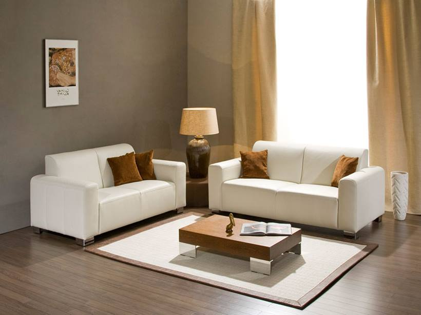 Gray Small Living Room Paint Color