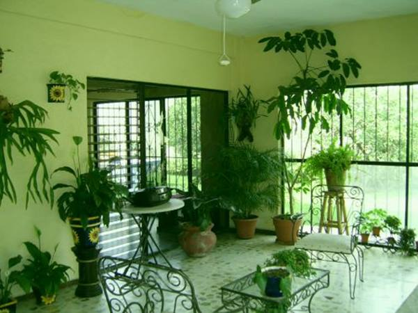 Green Home Design With Indoor Garden