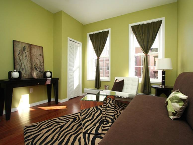 Green Living Room Paint Color Idea