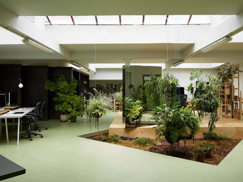 Indoor Garden To Make Home More Beautiful