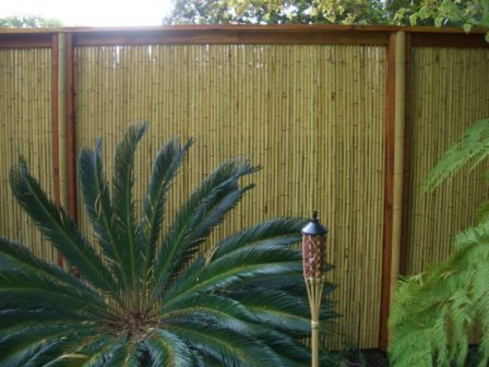 Natural Bamboo Fence Design Model