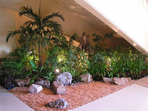Small Indoor Garden Plants Selection