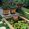 Small Pond For Minimalist Garden Decor