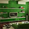 Minimalist Green Living Room Color Idea
