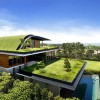 Beautiful Green Roof Design For Modern House