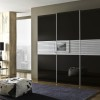 Elegant Black Wardrobe Design Idea