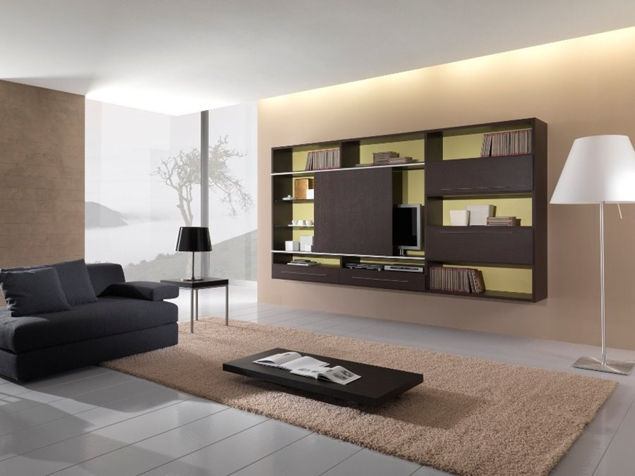 Modern Living Room Colors Idea